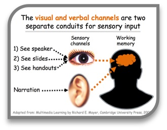 "Diagram caption: ""The visual and verbal channels are two separate conduits for sensory input"""