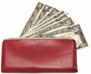 Wallet containing a monthly allowance